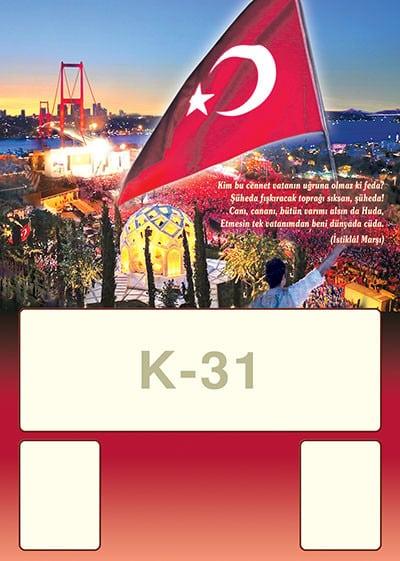 K31 - K31