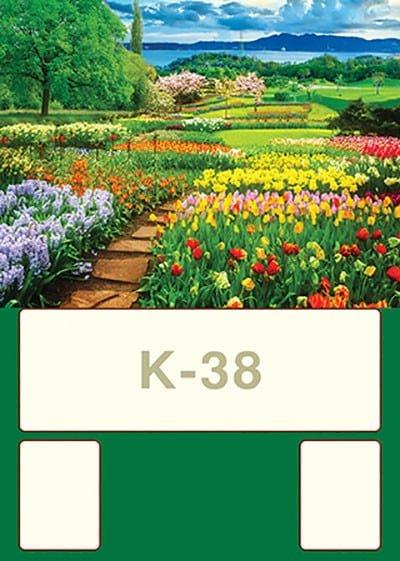 K38 - K38