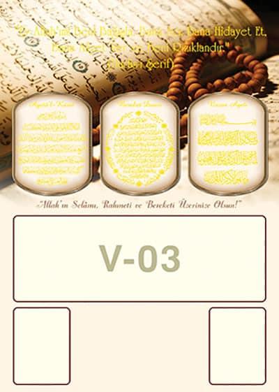 V03 - V03